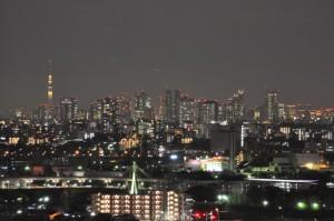 新宿高層ビルとスカイツリー